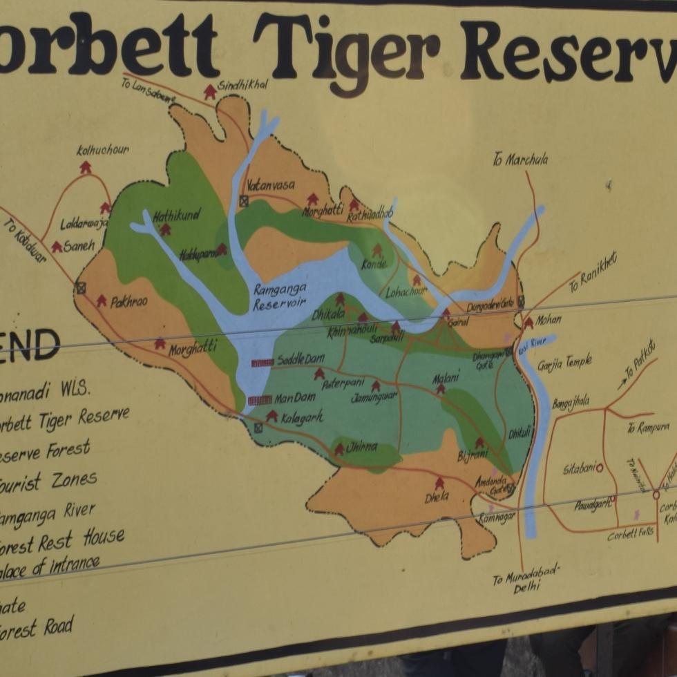 Jim Corbett tiger Safari